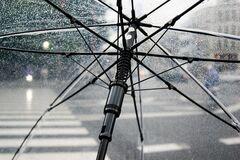 Безсніжжя та легке похолодання: прогноз погоди у Черкасах на найближчий тиждень