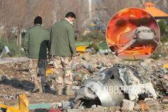 Сняли с авто и земли: появились 3 новых видео катастрофы Boeing в Иране