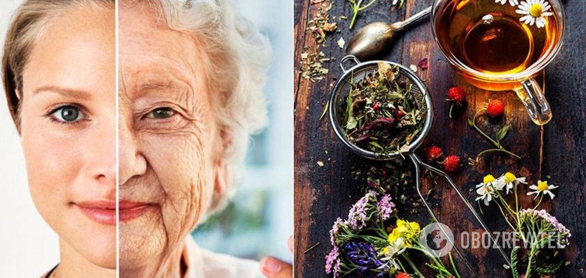 Регулярне пиття чаю знижує ризик передчасної смерті – вчені