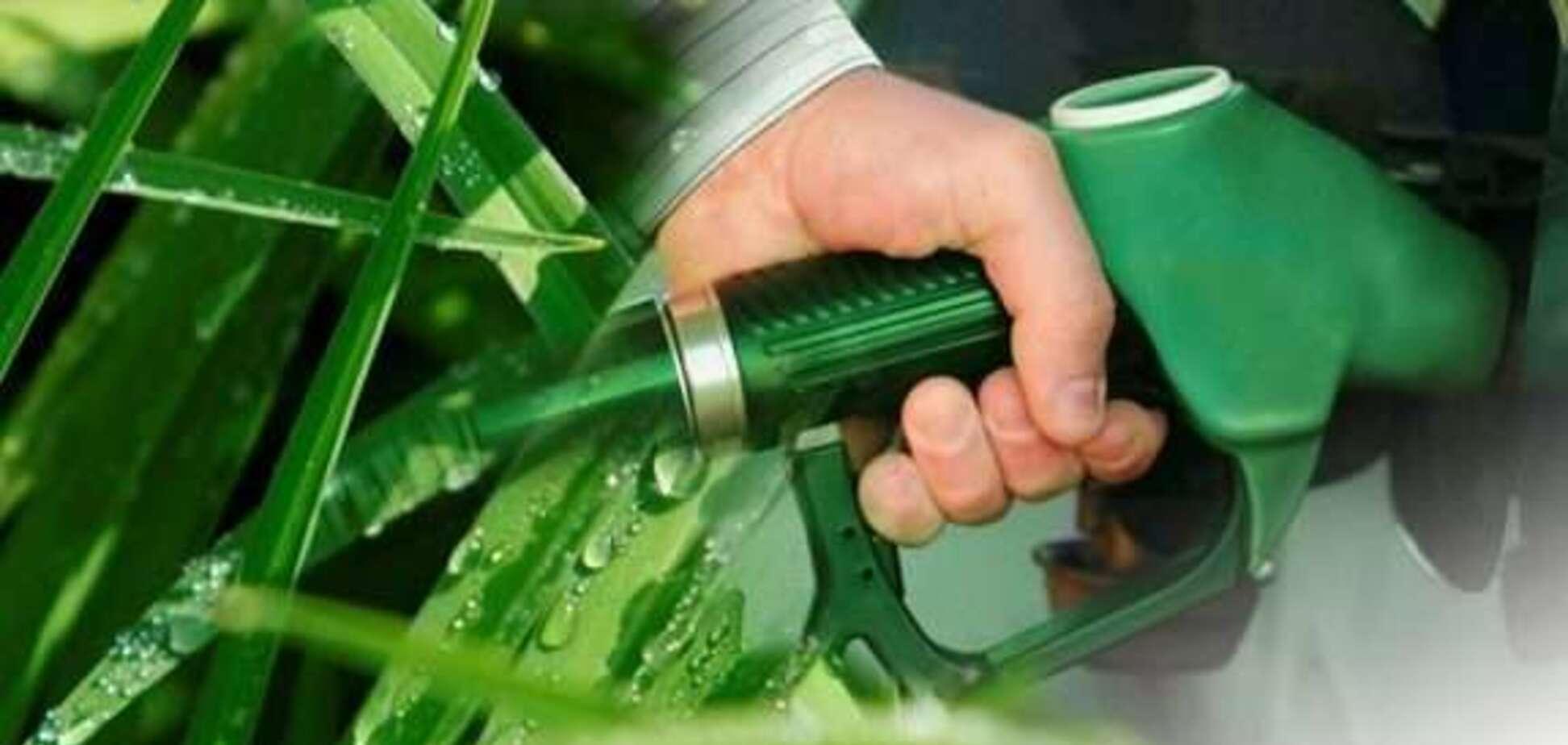 Дешевый бензин: появится ли он в Украине?