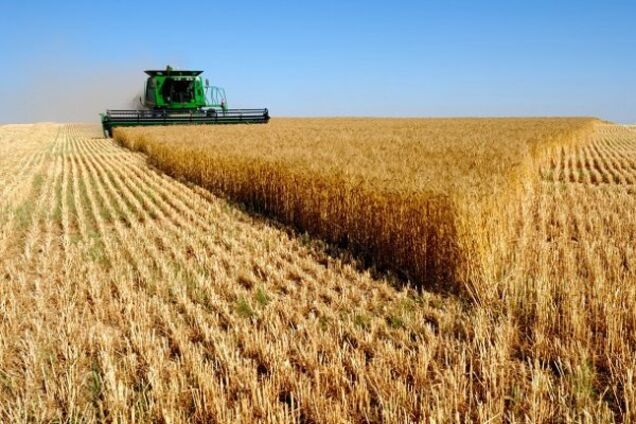 Україна стала одним з найбільших постачальником сільгосппродукції в ЄС