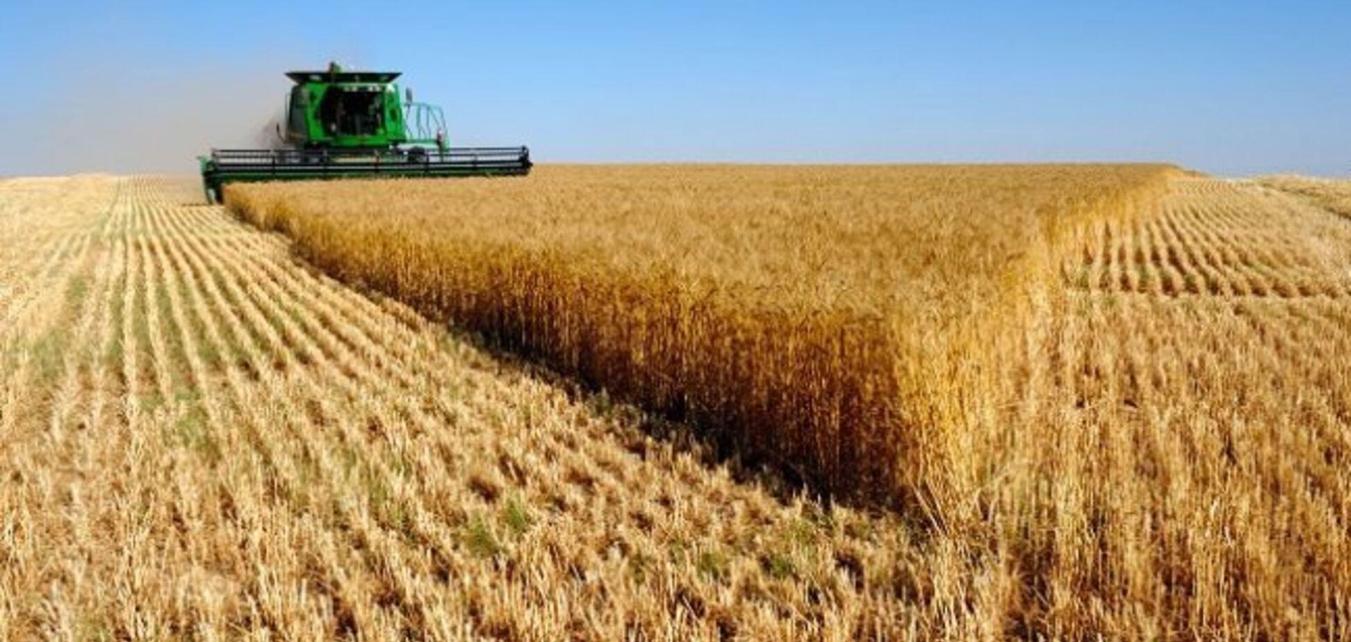Украина стала одним из крупнейших поставщиков сельхозпродукции в ЕС