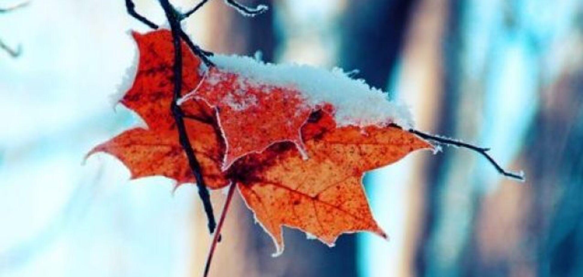 Погода в Украине с 13 по 19 января