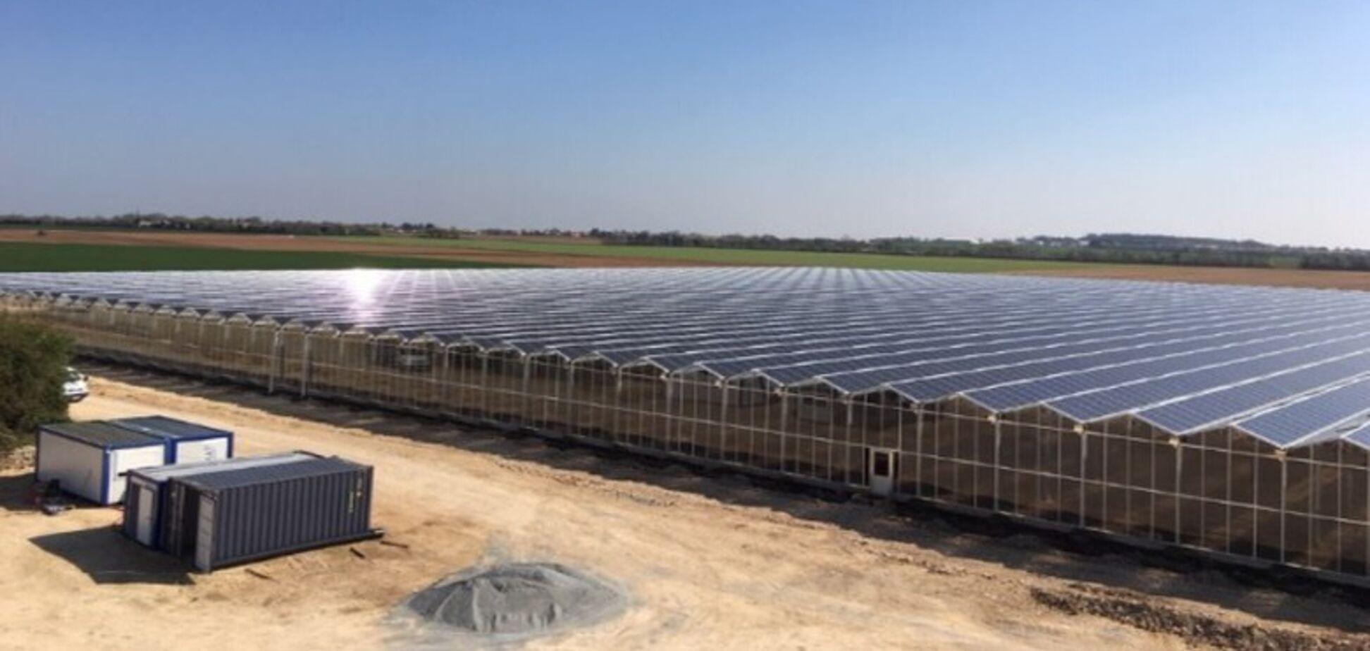 В Индии открыли солнечную станцию с рекордно низким тарифом