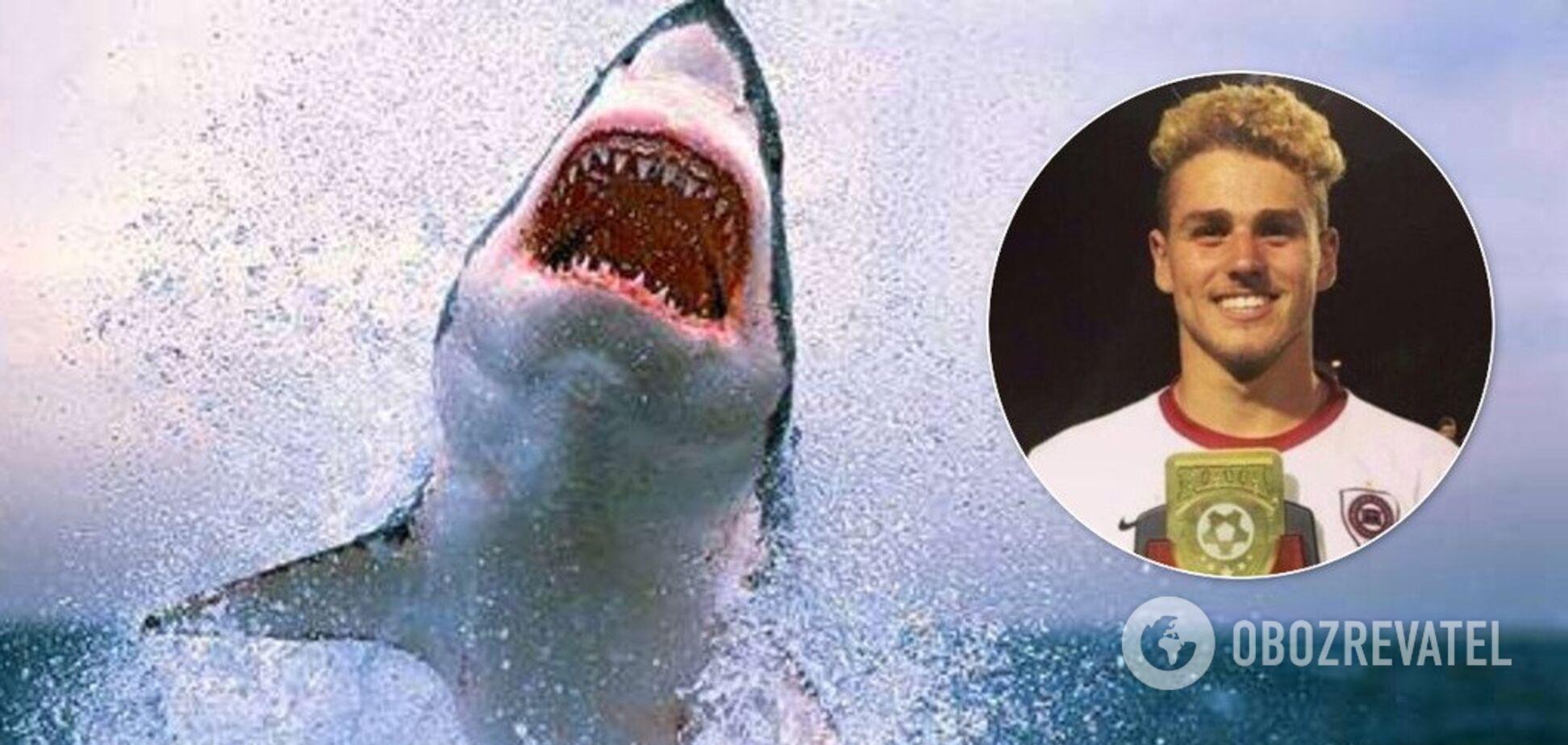 В Австралії акули загризли двох відпочивальників: фото