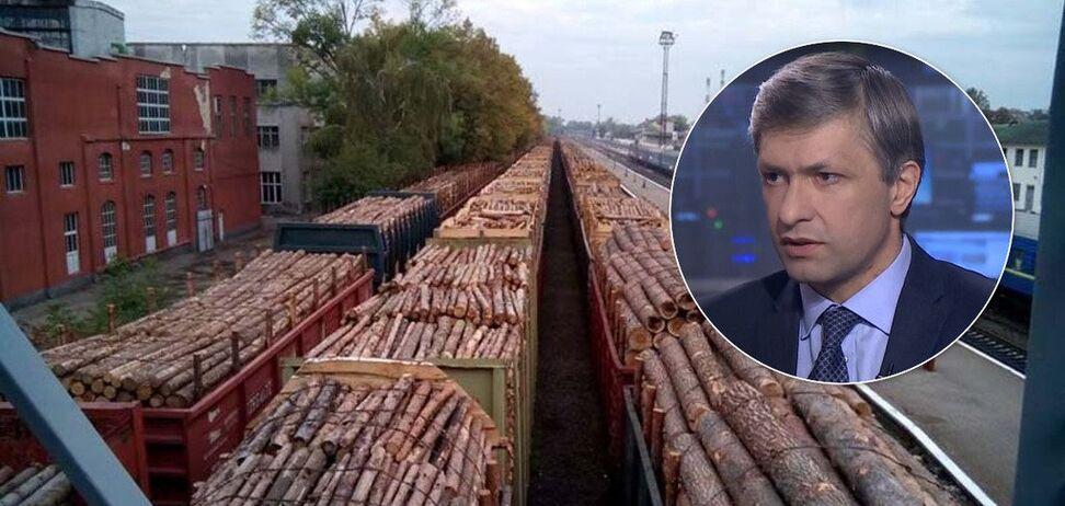 Скандальна заява віцепрем'єра щодо вирубування лісу: екснардеп вказав на помилку Кабміну