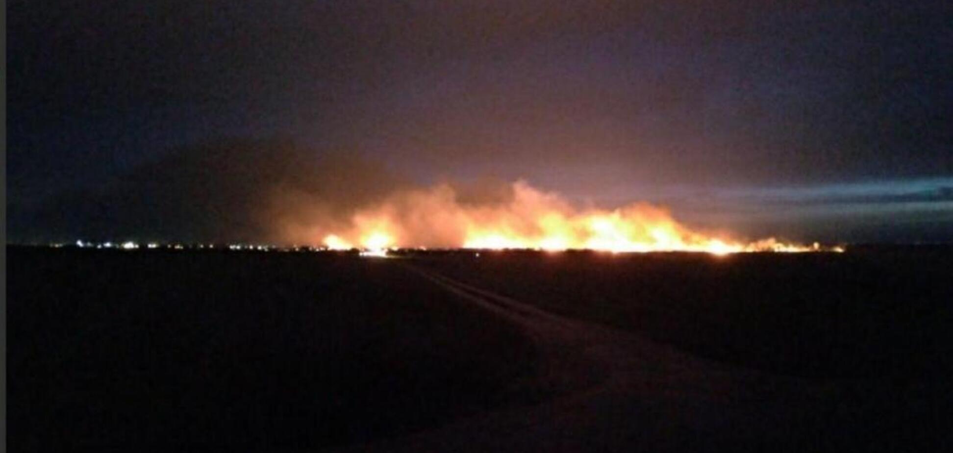 Пожежники не могли підступитися: під Одесою горіли 15 га національного парку. Фото і відео НП
