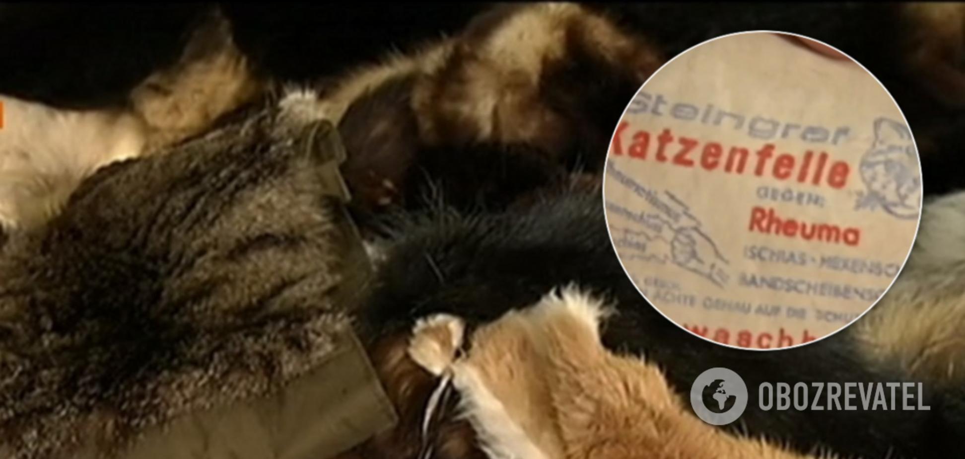 В Киеве нашли в продаже вещи из шкурок котов