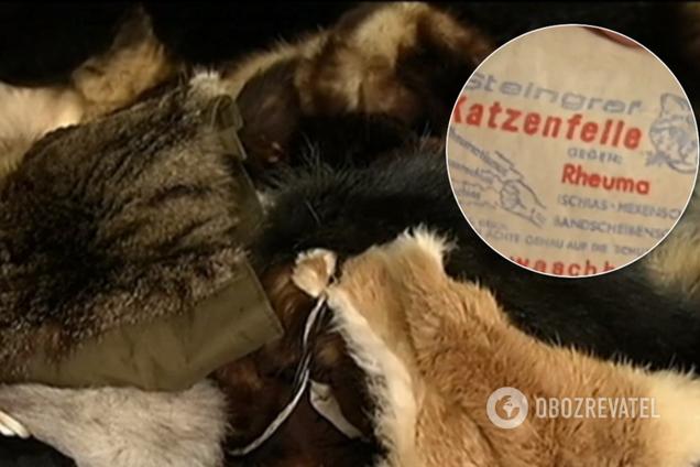 У Києві знайшли в продажу речі зі шкурок котів