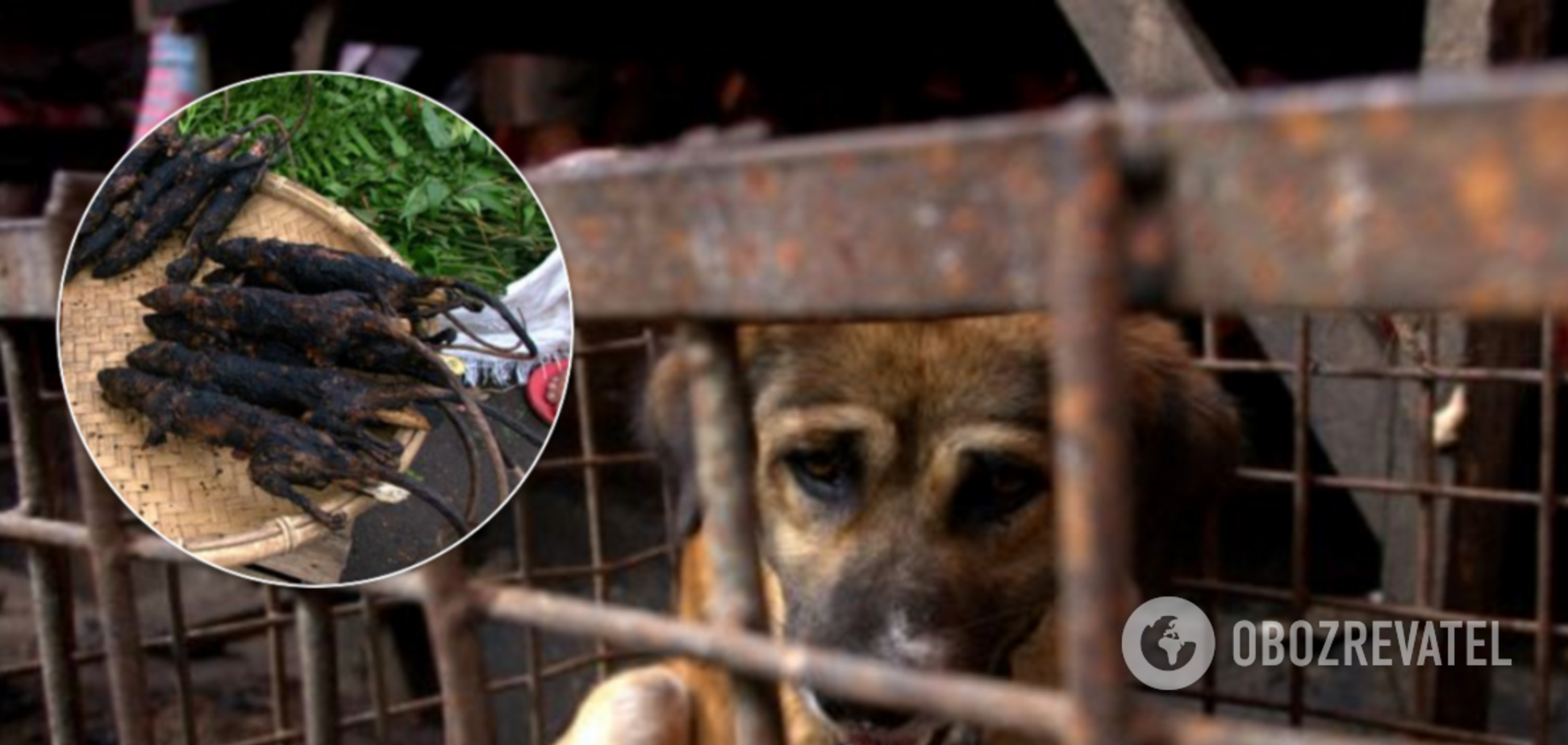 Коронавірус: мережа налякав ринок в Індонезії
