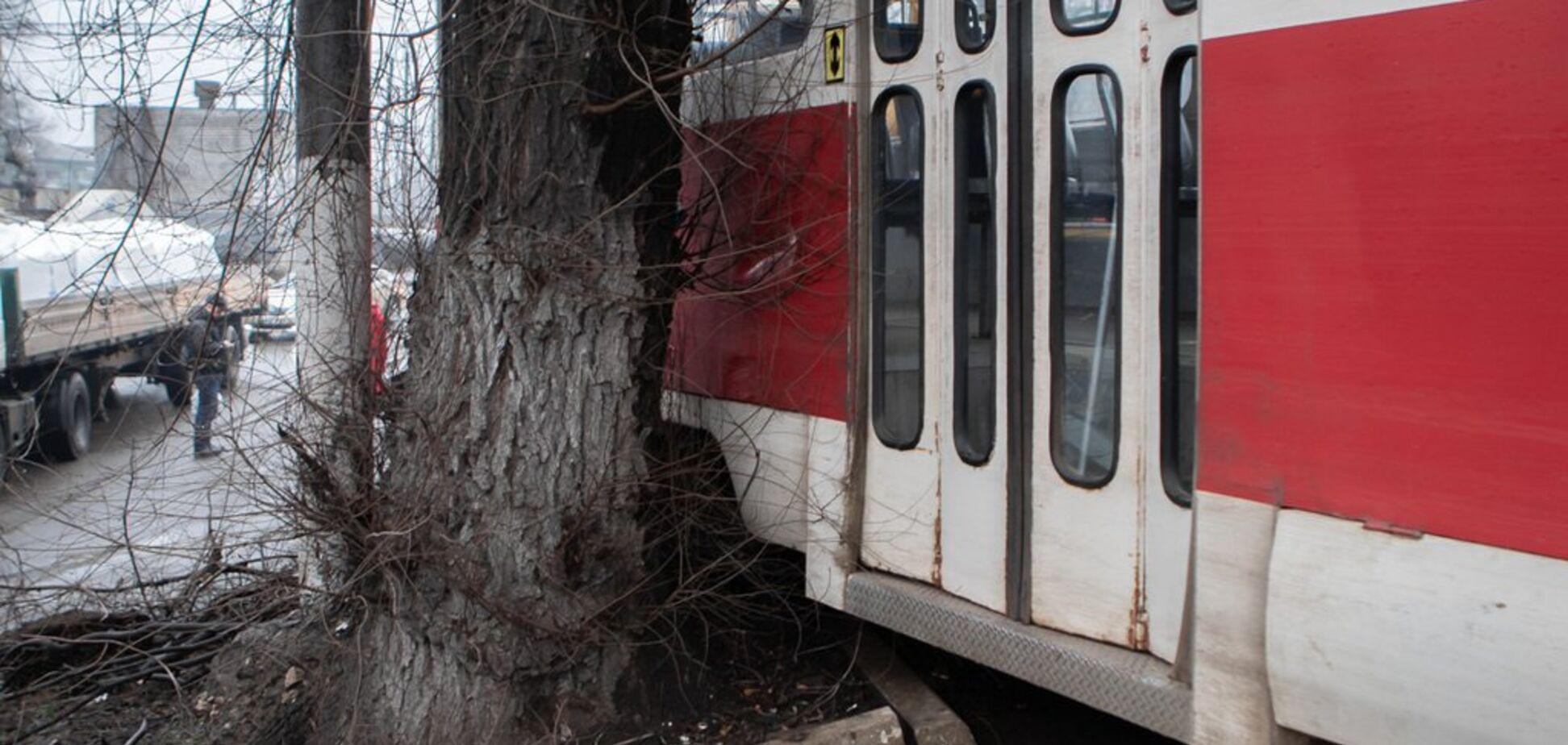 В Днепре трамвай слетел с рельсов и врезался в дерево: фото и видео жуткого ДТП