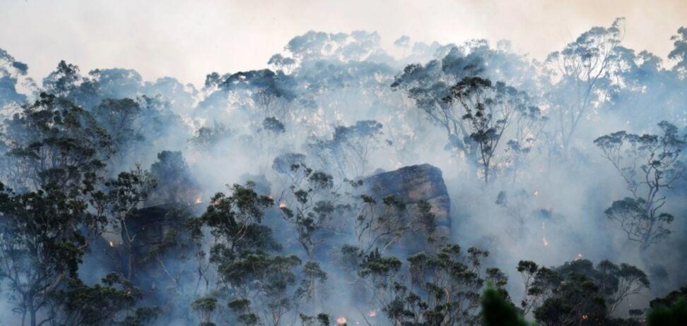 Запобігти кліматичному апокаліпсису: складено програму порятунку Землі на десятиліття