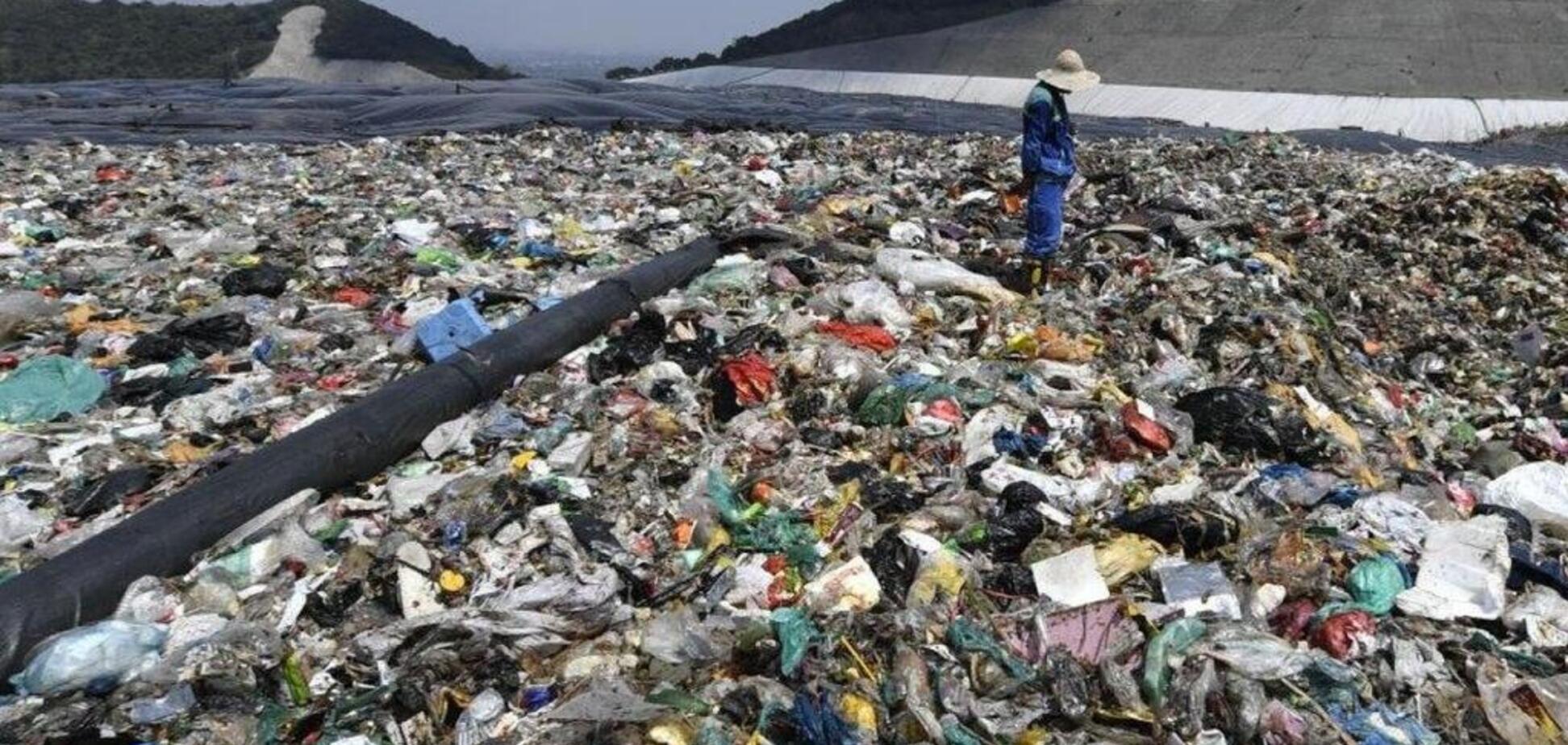 'Будущее требует заплатить цену': в Японии начали необычную борьбу с климатическим кризисом