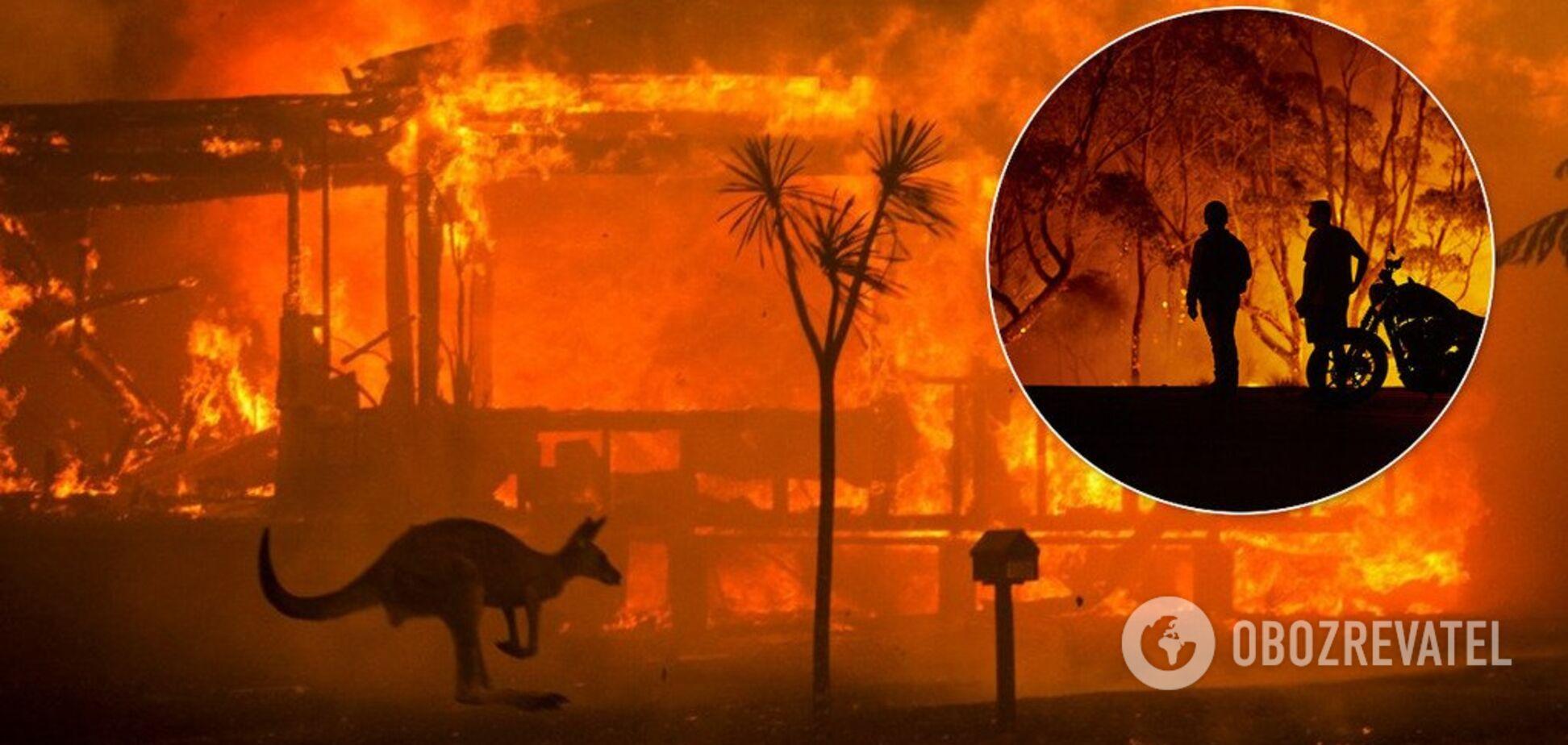 Пожежі в Австралії замкнулися в зачароване коло