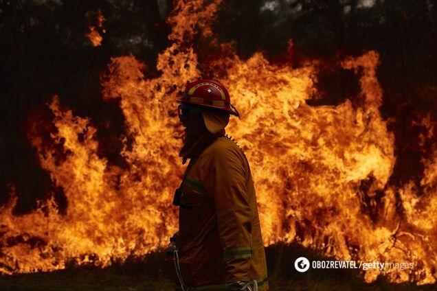 Пожары в Австралии замкнулись в заколдованный круг