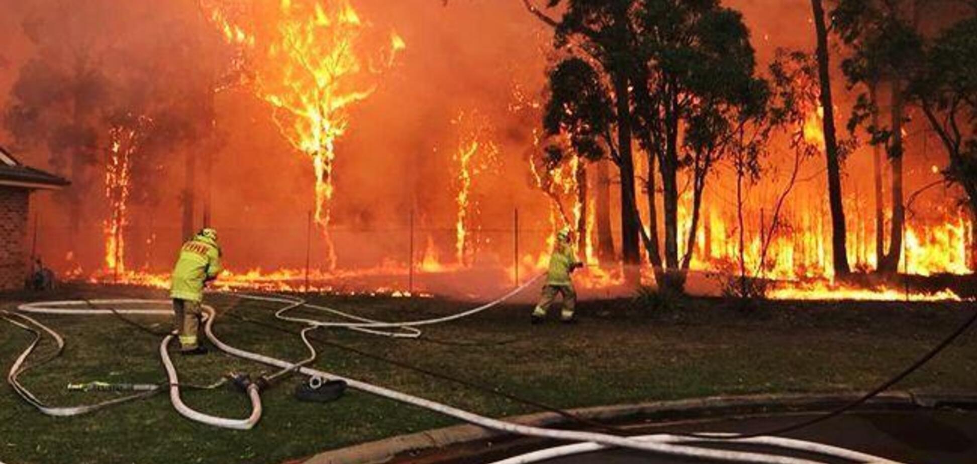 'Не будьте в омані': Порошенко призвал помочь австралийцам в борьбе с пожарами
