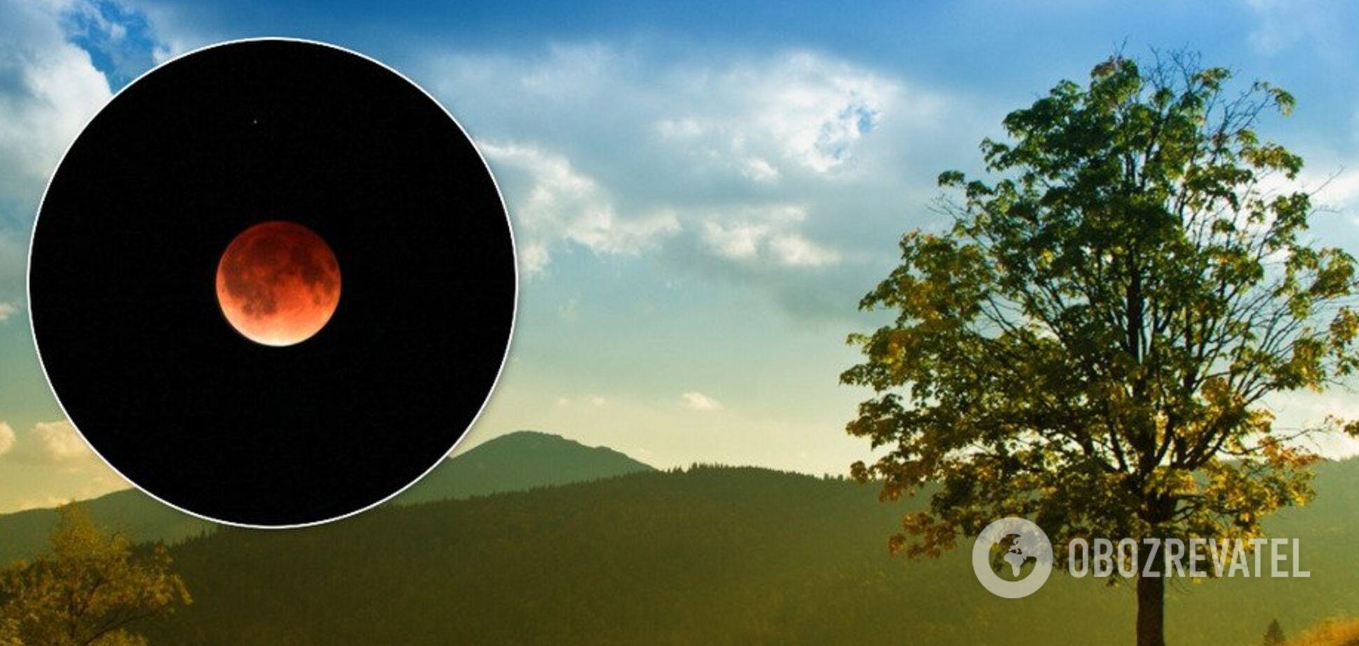 Лунное затмение 10 января: поберегите отношения и замки