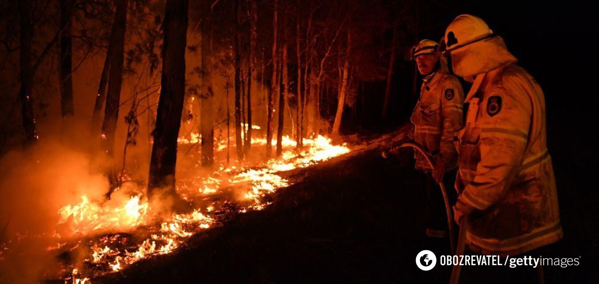 'Святий Боже не допоможе': українець, який живе в Австралії, розкрив правду про пожежі