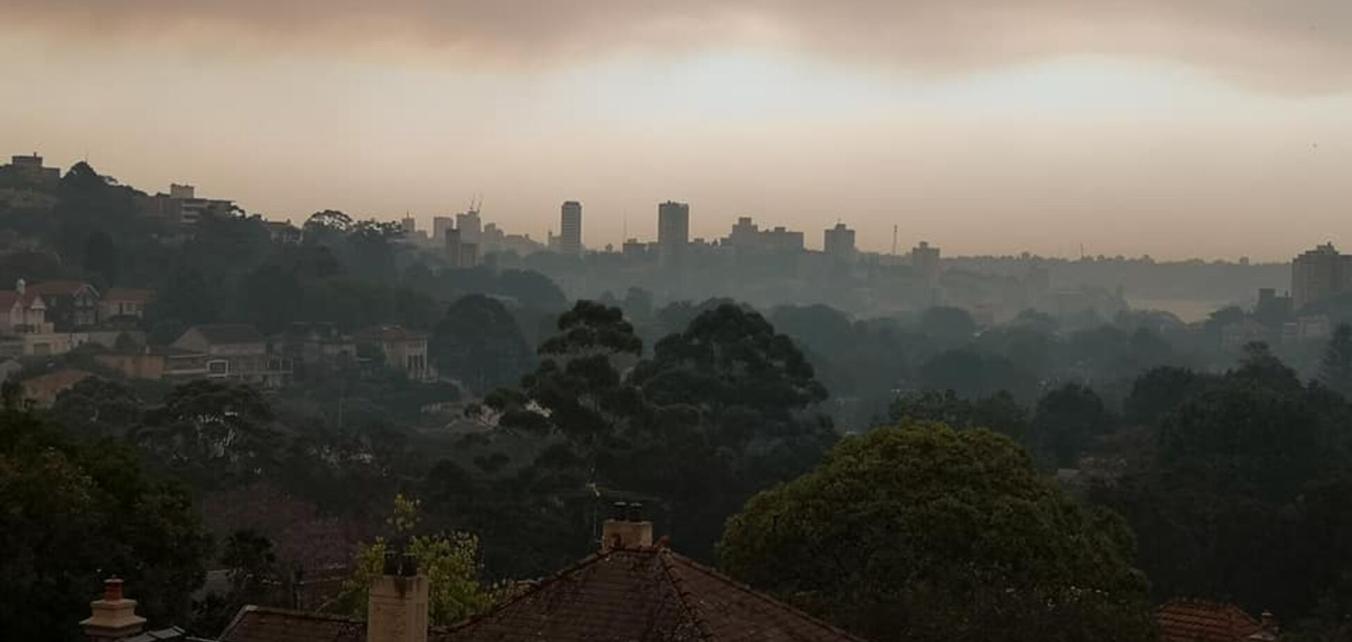 Пожары в Австралии глазами жителя Сиднея
