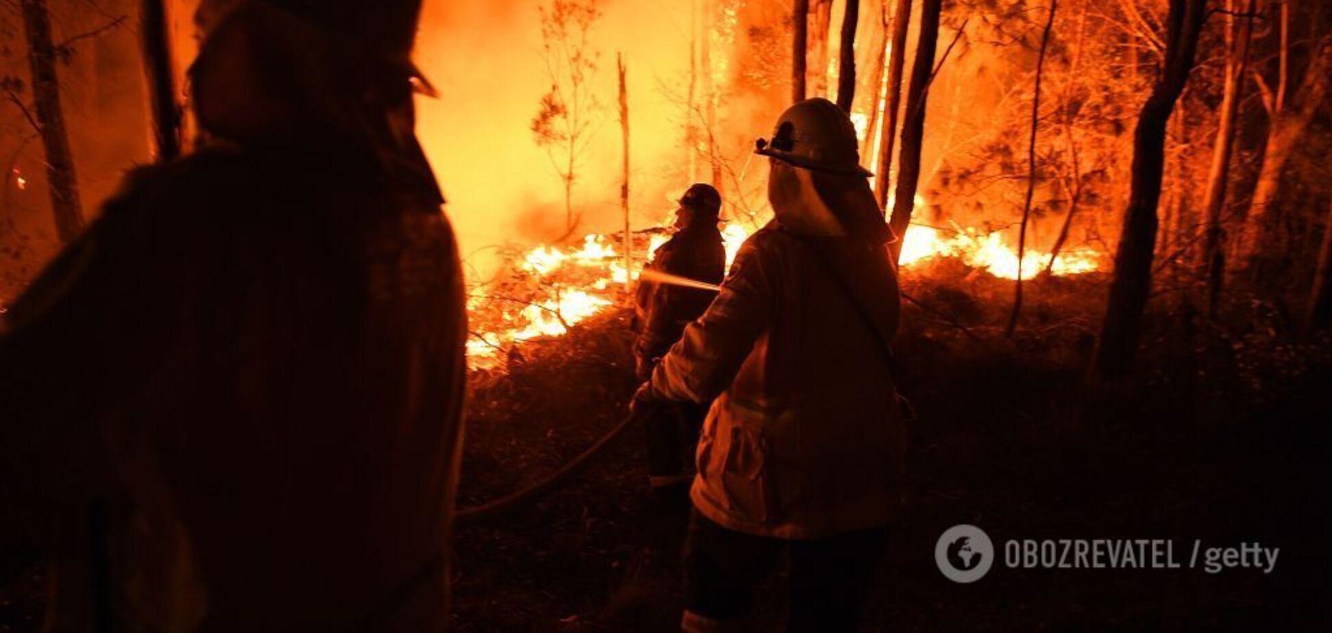 На Австралию надвигается новая волна страшных пожаров: началась эвакуация