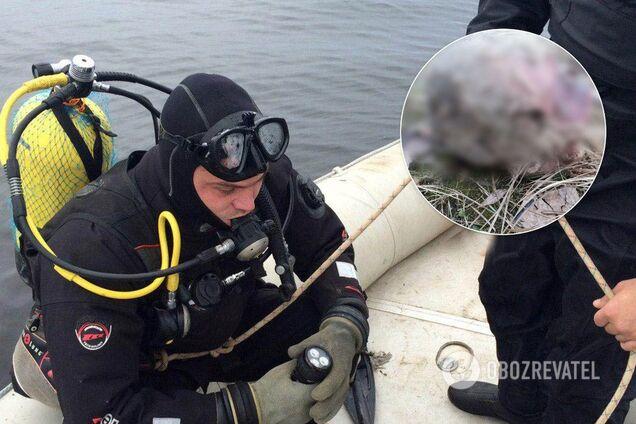 У Києві в Собачому гирлі знайшли людську голову