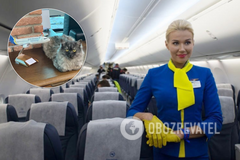 МАУ дозволили брати в салон літака тварин