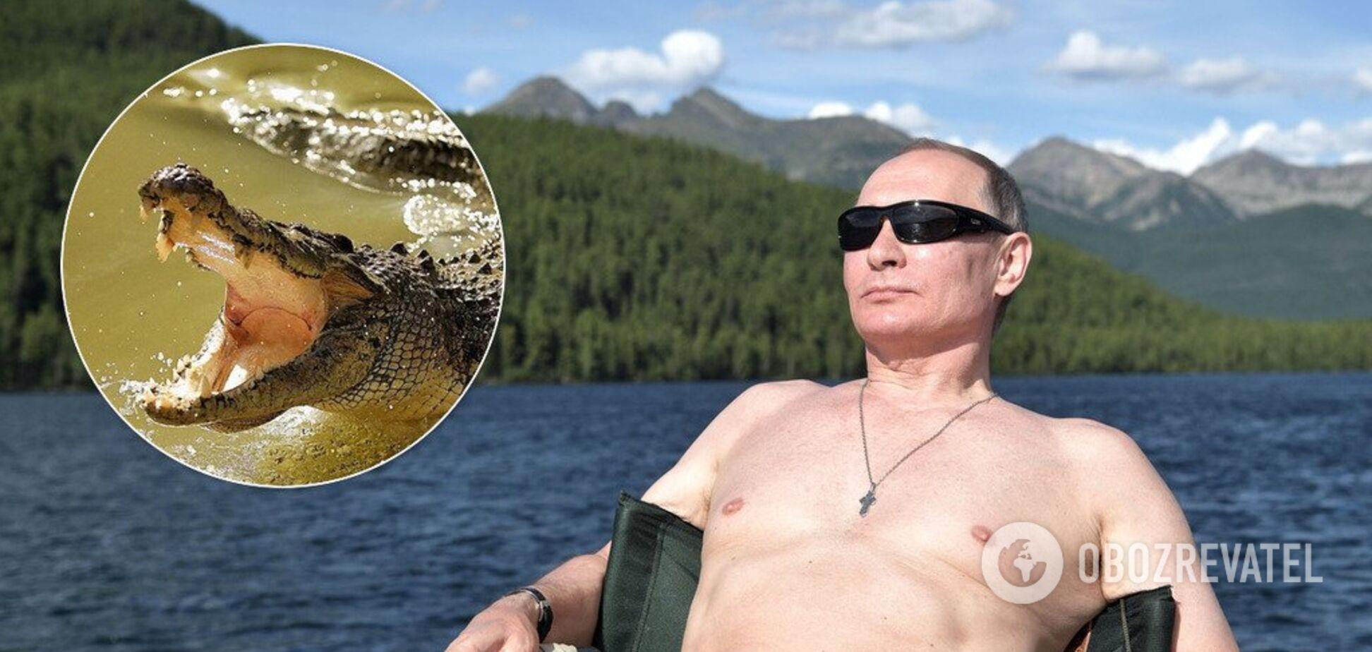 'Надо дать по носу': оппозиционер сравнил Путина с крокодилом