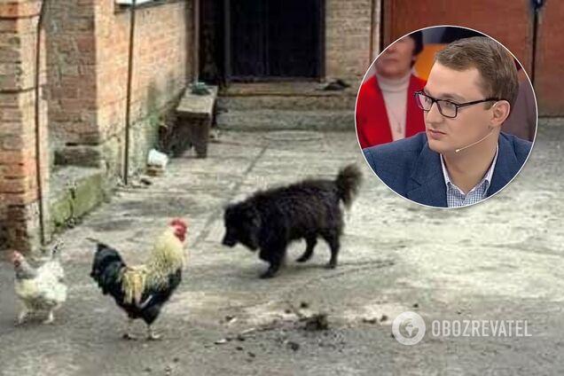 СМИ нашли собаку пенсионерки со скандала с Брагаром