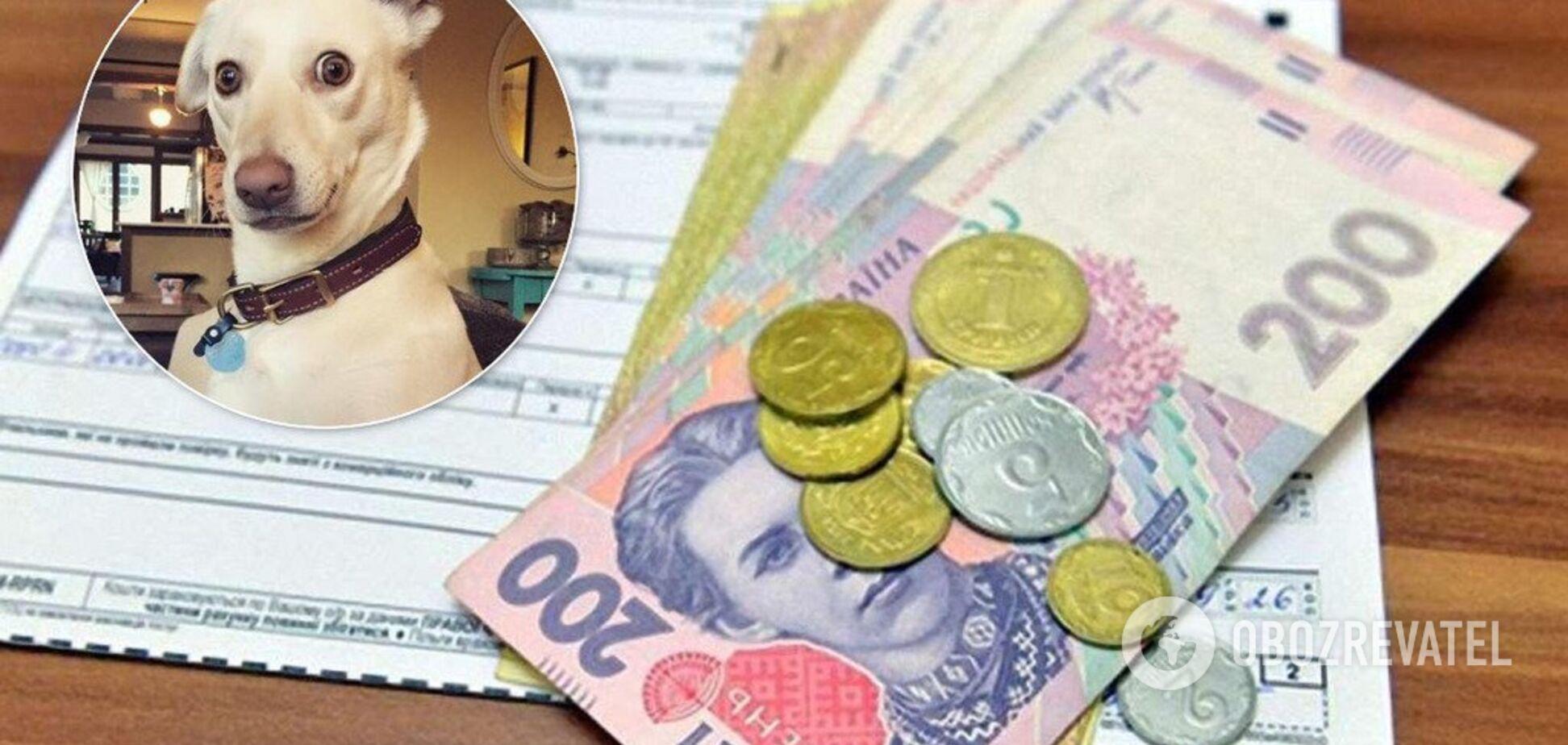 Собаку продавать не нужно: в Кабмине назвали сумму в платежках пенсионерки