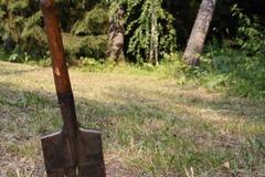Убил и закопал в посадке: на Черкасщине с мужчиной расправился будущий тесть. Видео