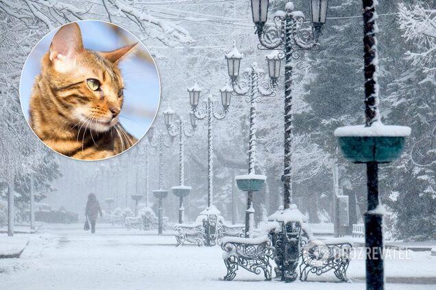 Похолодание в Украине начнется 8 февраля, потепление - 11 февраля