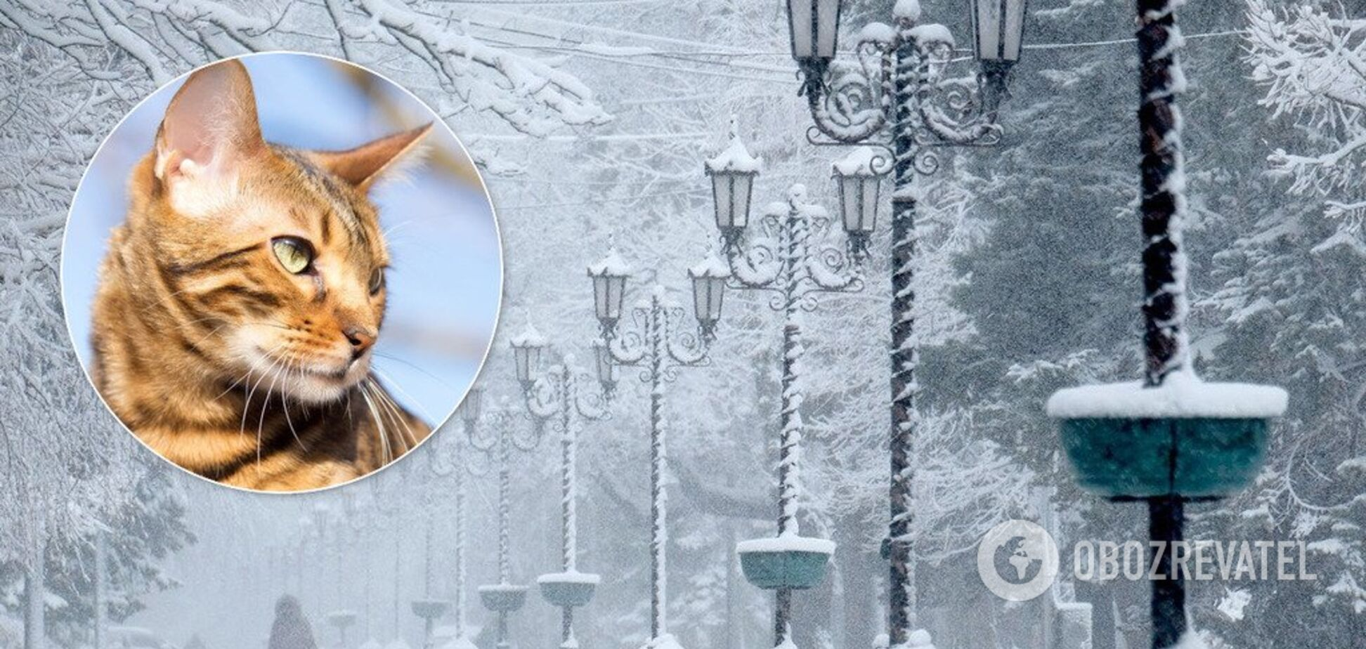 В Украину идут 13-градусные морозы: Гидрометцентр назвал дату