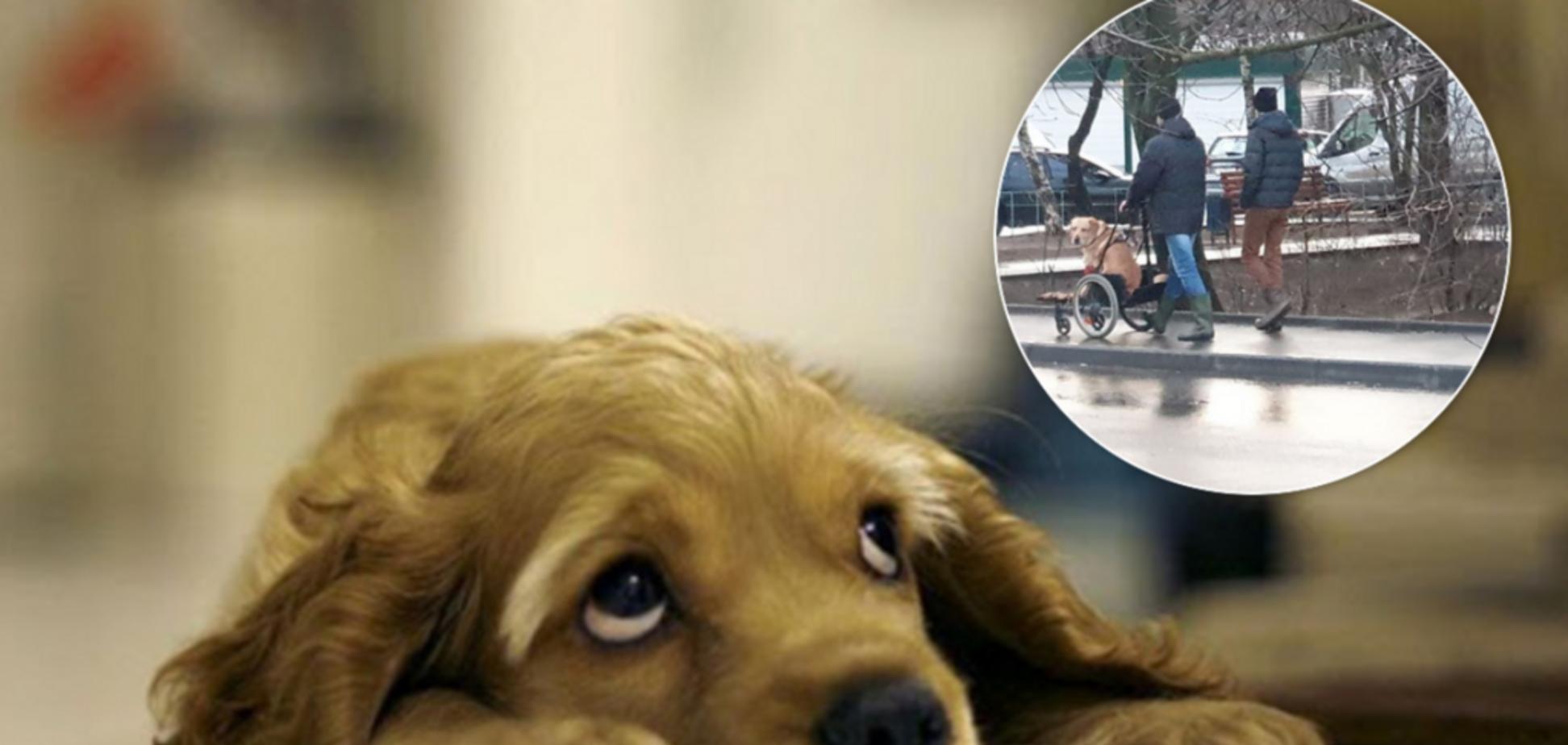'Продати? Жебрак душею, чуваче!' Українців до сліз зворушило фото харківського 'тріо з собакою'