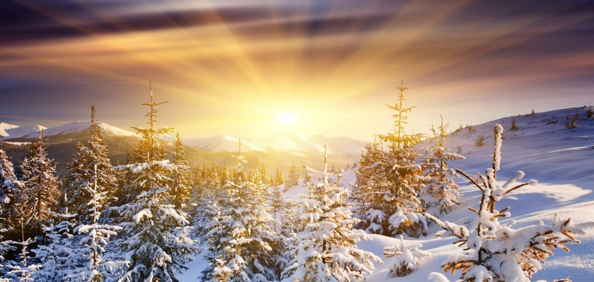 Прийде 'бабине літо': синоптик здивував прогнозом погоди на зиму-2020