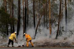 Пожары в Новом Южном Уэльсе потушил ливень
