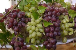 Аллерген на виноград