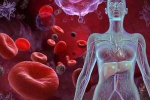 Фолиеводефицитная анемия: причини виникнення та основні симптоми, способи лікування захворювання