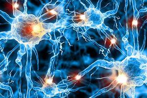 Эпилептический статус: причини виникнення та основні симптоми, способи лікування захворювання