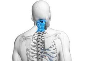 Сирингомиелия: причины возникновения и основные симптомы, способы лечения заболевания