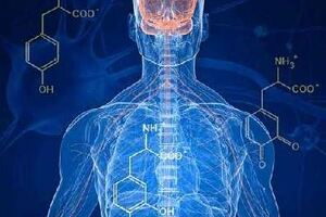 Амиотрофия: причини виникнення та основні симптоми, способи лікування захворювання