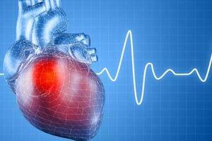 Нарушения сердечного ритма: причины возникновения и основные симптомы, способы лечения заболевания