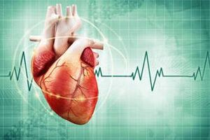 Внезапная сердечная смерть: причины возникновения и основные симптомы, способы лечения заболевания