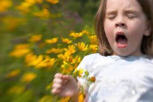 Аллергический ринит: причини виникнення та основні симптоми, способи лікування захворювання