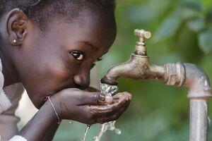 Холера: причины возникновения и основные симптомы, способы лечения заболевания