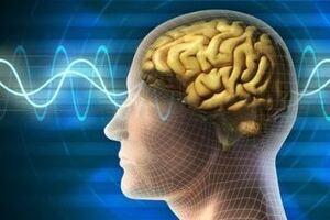 Вирусный менингит: причины возникновения и основные симптомы, способы лечения заболевания