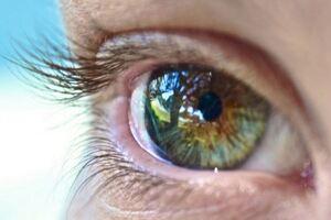 Туберкулез глаз: причины возникновения и основные симптомы, способы лечения заболевания