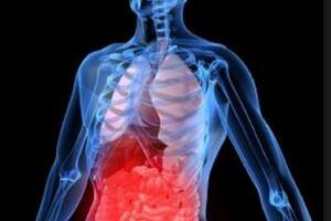 Желудочно-кишечное кровотечение: причины возникновения и основные симптомы, способы лечения заболевания