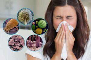Аллергия на пыль: причини виникнення та основні симптоми, способи лікування захворювання