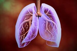 Астма: причини виникнення та основні симптоми, способи лікування захворювання