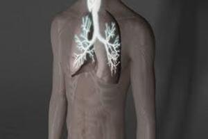 Токсикомания: причини виникнення та основні симптоми, способи лікування захворювання